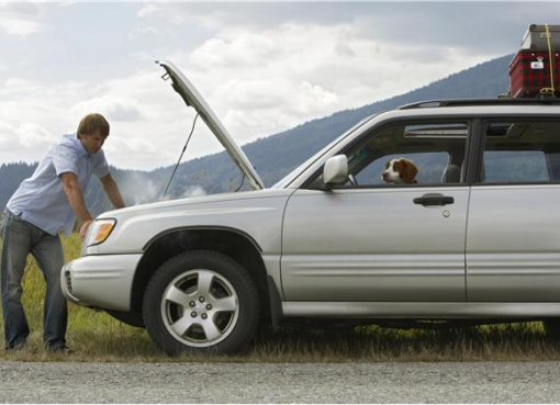 kroviniu pervezimas, patikimu automobiliu nuoma